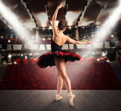 Quadro ballerina classica al teatro