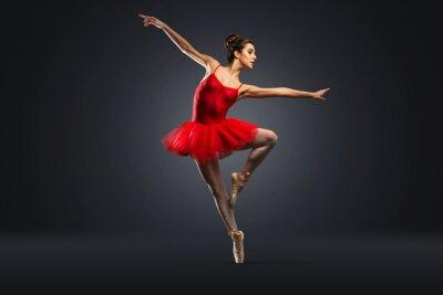 Quadro Ballerino Classico