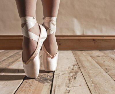 Quadro Ballet Shoes sul pavimento di legno