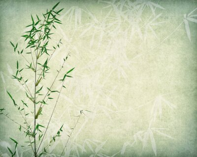 Quadro bamboo on old paper background