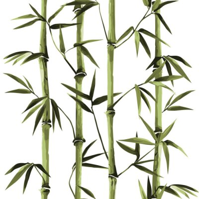 Quadro Bamboo Seamless Vertical Border on white background