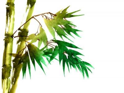 Quadro Bambù tropicale con foglie