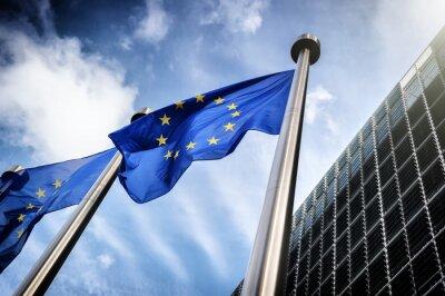Quadro Bandiere dell'Unione europea