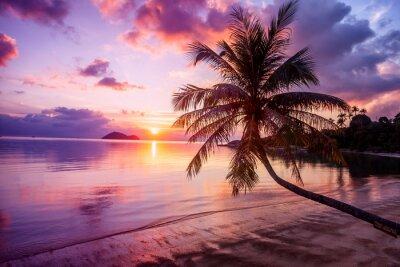 Quadro Bel tramonto luminoso su una spiaggia paradisiaca tropicale