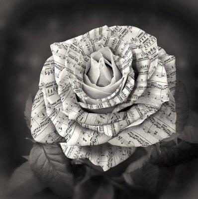 Quadro Bella bianco e nero è aumentato con la nota sui petali