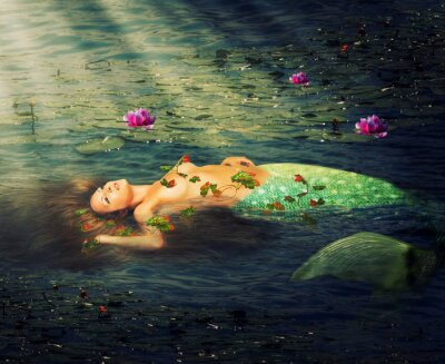 Quadro Bella donna sirena