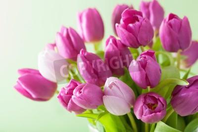 Quadro bella viola fiori di tulipano sfondo