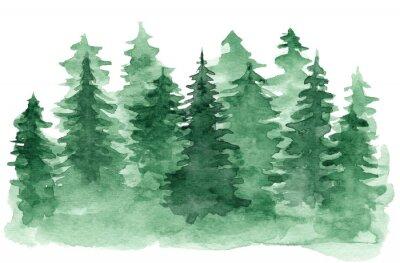 Quadro Bellissimo sfondo acquerello con foresta di conifere verde. Illustrazione misteriosa degli abeti o dei pini per il disegno di natale di inverno, isolata su priorità bassa bianca