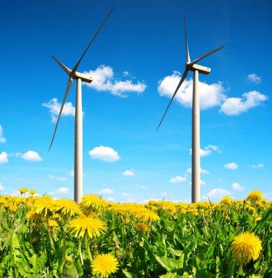 Quadro Campo di tarassaco con turbine eoliche. Energia pulita.
