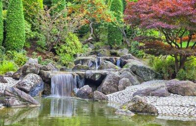 Quadro Cascata cascata nel giardino giapponese a Bonn