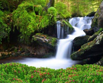 Quadro Cascata nel parco nazionale Sumava-Cechia
