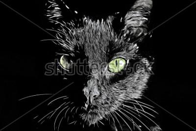 Quadro Cat face face in bianco e nero realistico disegnati a mano in stile scratchboard immagine