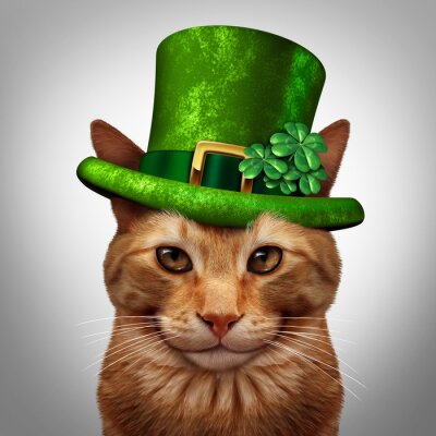 Quadro Cat Saint Patricks Day