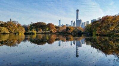 Quadro Central Park caduta paesaggio riflessione a New York City