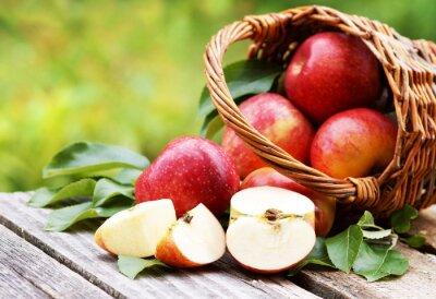 Quadro Cesto con mele fresche