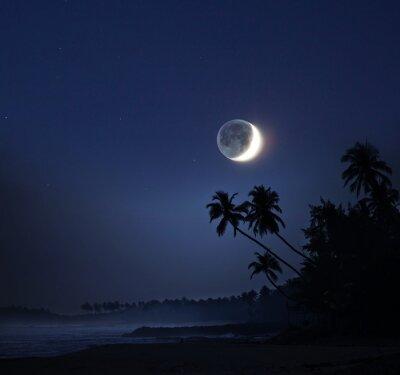 Quadro Chiaro di luna