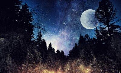 Quadro Cielo stellato e luna. Supporti misti