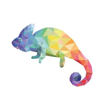 Quadro Colore Chameleon
