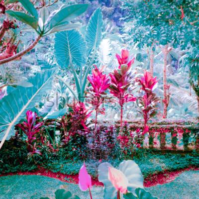 Quadro Colori surreali del giardino di fantasia con piante e fiori incredibili