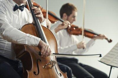 Quadro Concerto di musica classica