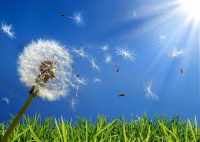 Quadro concetto di allergie in primavera - esclusiva