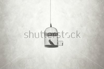 Quadro concetto di libertà, uccello in una gabbia aperta