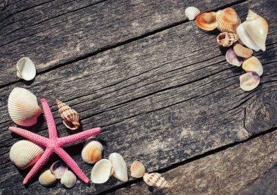 Quadro Conchiglie di mare sullo sfondo in legno