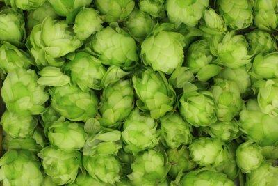 Quadro coni di luppolo verde sfondo astratto