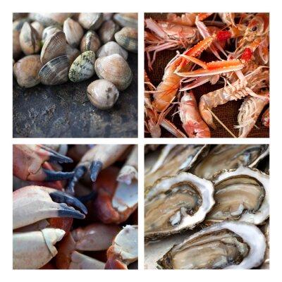 Quadro Coquillages Crustaces fruits de mer marée pêche