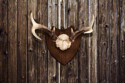 Quadro Corna su una parete di legno