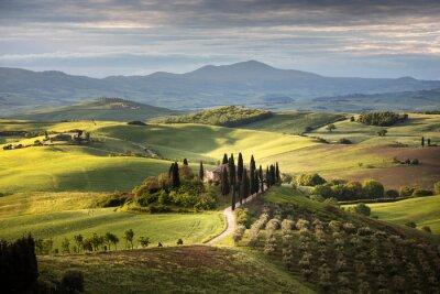 Quadro Countryside near Pienza, Tuscany, Italy