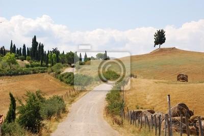 Quadro crete senesi - sentiero di tra i campi