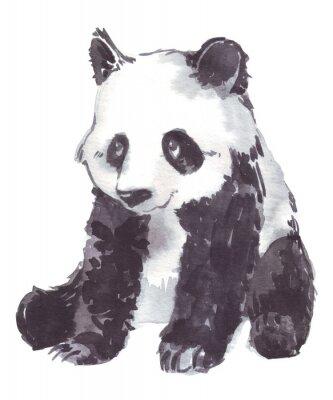 Quadro disegno illustrazione di un panda