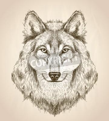 Quadro Disegno vettoriale illustrazione di una vista frontale della testa di lupo, disegno vettoriale fauna selvatica in bianco e nero.