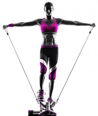 Quadro donna stepper idoneità resistenza lega esercizi