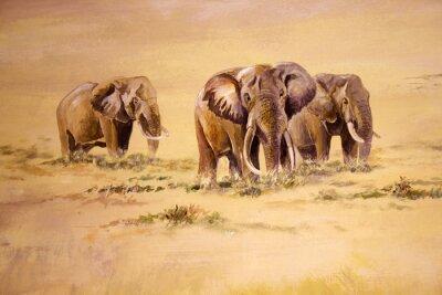 Quadro Elefante africano, il Sudafrica