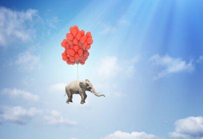 Quadro Elefante con palloncini