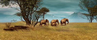 Quadro Elefanti africani, 3d CG
