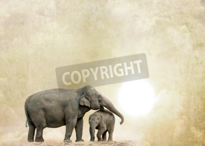 Quadro elefanti su uno sfondo grunge
