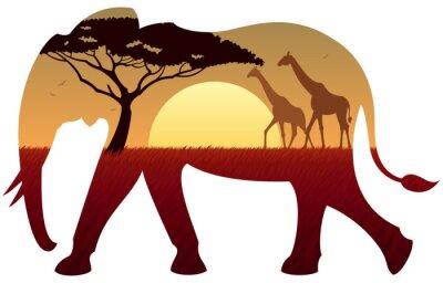 Quadro Elephant Paesaggio