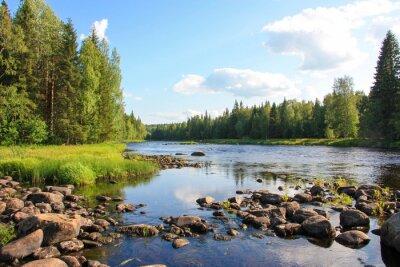 Quadro estate fiume