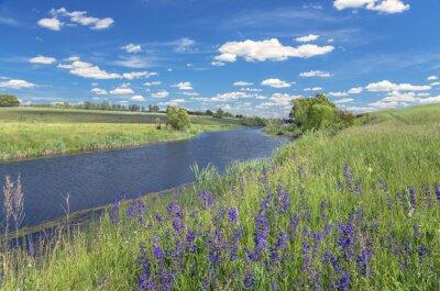 Quadro Estate paesaggio con fiume