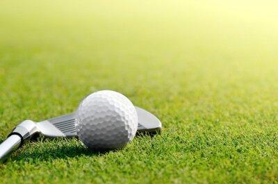 Quadro Facciamo Golf