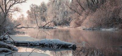 Quadro fantastico paesaggio invernale