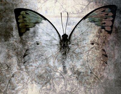 Quadro farfalla