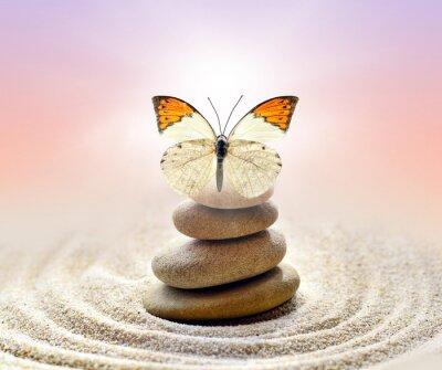 Quadro Farfalla e pietre equilibrio