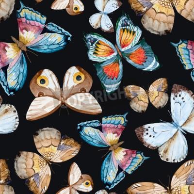 Quadro farfalle acquerello illustrati