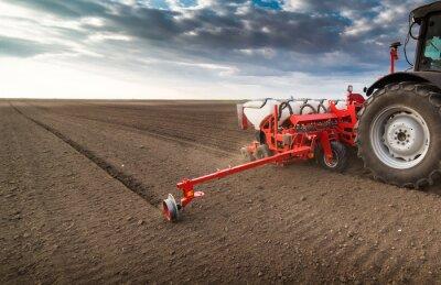 Quadro Farmer con il trattore semina - semina in campo agricolo in primavera