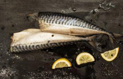Quadro Fette di sgombro taglio di limone, sale, pepe su sfondo nero