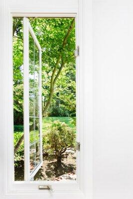 Quadro Finestra aperta al sole, giardino estivo; concentrarsi su alberi e all'aperto